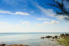Малые утесы в воде ветвью дерева побережья пушистой на переднем плане Стоковое Фото