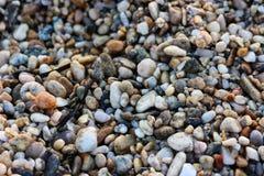Малые утесы на скалистом пляже Стоковое Изображение RF
