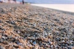 Малые утесы на скалистом пляже Стоковые Изображения RF