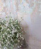 Малый букет белых цветков Стоковая Фотография