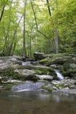 Малый водопад в национальном парке Shenandoah Стоковое Изображение