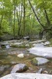 Малый водопад в национальном парке Shenandoah Стоковая Фотография