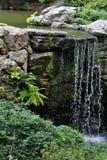 Малый водопад в саде Стоковое фото RF