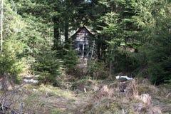 Малый деревянный амбар в деревне леса гор стоковое фото