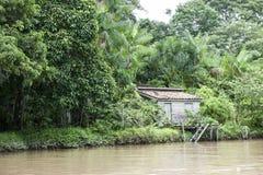Малый дом на Амазонке стоковая фотография rf