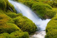 Малый каскадируя водопад Стоковое фото RF