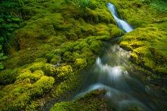 Малый каскадируя водопад Стоковое Изображение