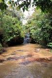 Малый каскад в sabana Венесуэле gran Стоковое Изображение RF
