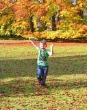 Малый мальчик играя в октябре 2015 полесья падения осени смеясь над и усмехаясь стоковая фотография