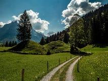 Малый пеший путь во время весны Швейцарии стоковые фото