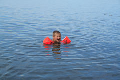 малый пловец Стоковое Фото