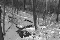 Малый поток в снеге зимы стоковое фото rf