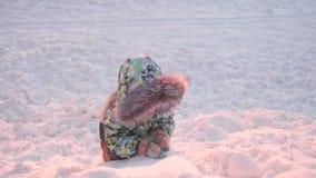 Малый ребенок играет в парке зимы зима дня солнечная Потеха и игры в свежем воздухе видеоматериал