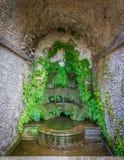 Малый фонтан в ` Este виллы d, Tivoli, Лацие, центральной Италии Стоковые Фотографии RF