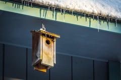 Малый birdhouse на крыше под сосульками стоковое фото