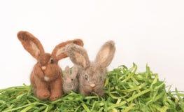 3 малых пушистых кролики или зайчика на зеленой траве и Wh Faux Стоковые Изображения