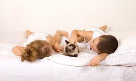 малыши кота кровати кладя играть стоковые изображения