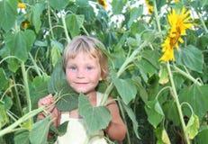 малыш солнцецвета девушки напольный Стоковое фото RF