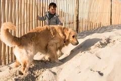 Малыш с собакой на пляже стоковое изображение