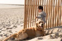 Малыш с собакой на пляже стоковое фото rf