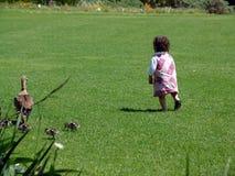 малыш травы идущий Стоковые Изображения