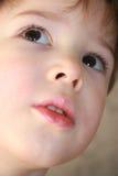 малыш Стоковые Изображения