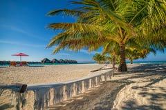 Мальдивы, экзотическое назначение для праздника или медового месяца, белого пляжа коралла с ладонями в рае стоковые изображения