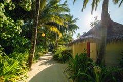 Мальдивы, экзотическое назначение для праздника или медового месяца, белого пляжа коралла с ладонями в рае стоковые фотографии rf