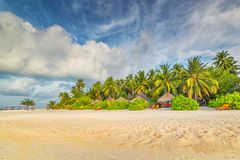 Мальдивы, экзотическое назначение для праздника или медового месяца, белого пляжа коралла с ладонями в рае стоковые изображения rf