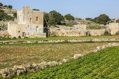 Мальтийсная ферма на Birzebbugia Стоковое Изображение RF