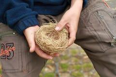 мальчик вручает гнездй Стоковые Фото
