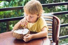 Мальчик выпивает домодельное молоко кокоса от половины кокоса Стоковая Фотография RF