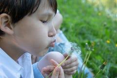 Мальчик в поле с одуванчиками стоковая фотография
