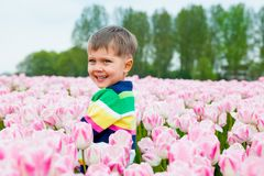 Мальчик в поле тюльпана Стоковое Фото