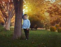Мальчик в природе стоковые фото