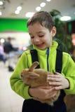 Мальчик держа кролика Стоковые Фотографии RF