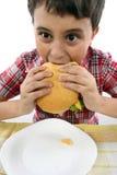 мальчик есть гамбургер Стоковые Изображения RF