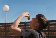 Мальчик есть одну очень вкусную клубнику outdoors стоковые фотографии rf