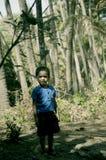 Мальчик играя на парке кокоса на пляже стоковые изображения