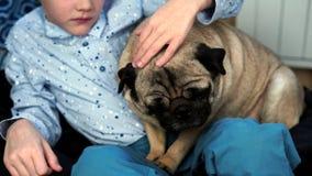 Мальчик играя с собакой в доме на кресле акции видеоматериалы