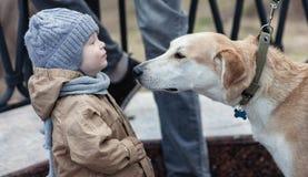 Мальчик и собака стоковая фотография