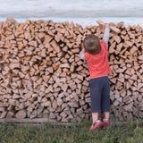 Мальчик и firewoods Альтернативная концепция образования деревенское место Сельская предпосылка стоковые изображения rf
