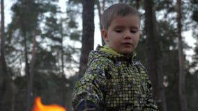 Мальчик кладя brashwood для поддержания шестка Избежание от дома Бездомные дети Социальные проблемы Флора и фауна сток-видео