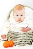 мальчик корзины осени стоковые изображения rf