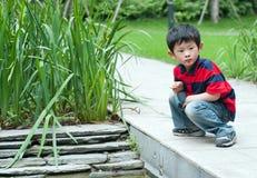 мальчик любознательний Стоковое Изображение