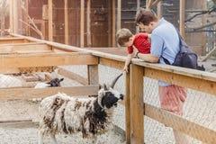 Мальчик малыша и его отец на зоопарке Стоковые Фото