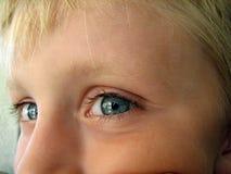 мальчик меньший портрет Стоковая Фотография