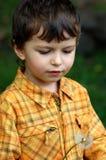 мальчик меньший портрет Стоковые Изображения