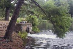 мальчик меньший резервуар Стоковая Фотография