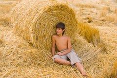 мальчик мечтая поле Стоковые Фото